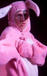Curiodity bunny1
